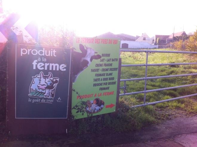 法國鄉村牛牧場