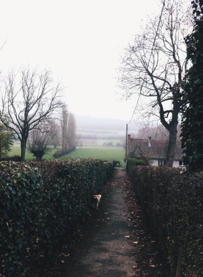 法國鄉下冬天