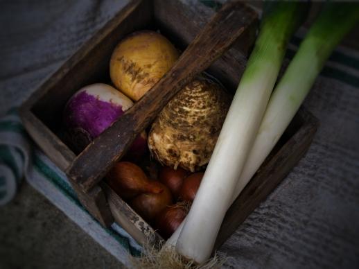 根莖蔬菜湯Les leguemes-racines