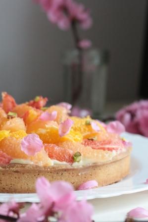 柑橘葡萄柚塔Tarte au pamplemousse-1