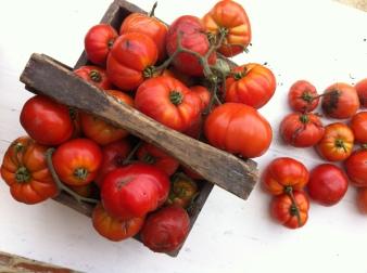 蔬菜在我的罐子裡-無水熬煮番茄醬Sauce tomates-8