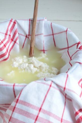 自製芶達士乳酪faire son cottage cheese maison