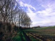 法國鄉村景色