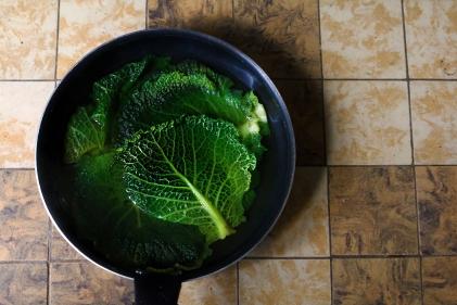捲心菜葉包蒸魚POISSON VAPEUR EN FEILLES DE CHOU
