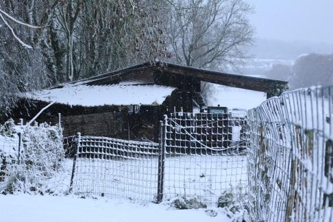 neige12-2018