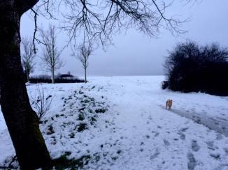 neige12-2017-1