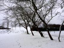 neige12-2017-10