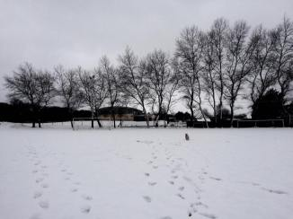 neige12-2017-2