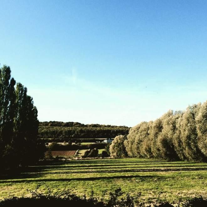 法國鄉村景色-1
